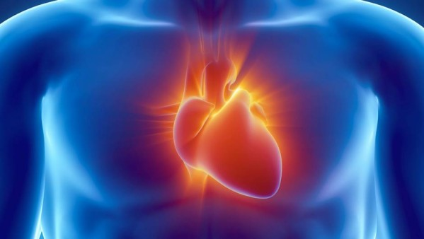 insuffisance cardiaque télémédecine méta-analyse